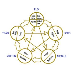 Österländsk filosofi - 5-elementsteorin